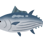 fish_katsuo2