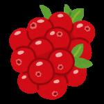 fruit_cranberry