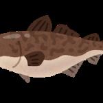 fish_tara